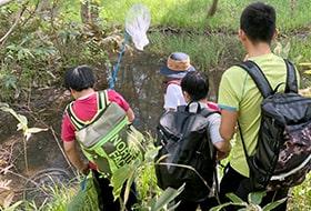子供達が夏の公園の池で虫取りをしている画像