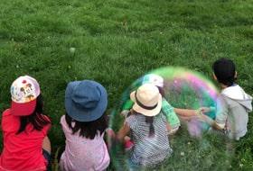 子供達が秋の動物園で馬に餌やりをしている画像
